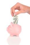 Donna che dispone la fattura del dollaro nella banca piggy Fotografia Stock Libera da Diritti