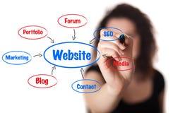Donna che dissipa uno schema di Web site in un whiteboard Fotografia Stock Libera da Diritti