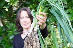 Donna che esamina il suo raccolto del giardino immagine stock libera da diritti