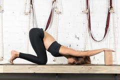 Donna che fa gli esercizi in palestra, allungamento di yoga di addestramento della ragazza di forma fisica di sport Immagini Stock Libere da Diritti