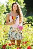 Donna che fa il giardinaggio con le rose Immagine Stock
