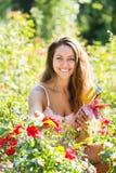 Donna che fa il giardinaggio con le rose Fotografie Stock Libere da Diritti