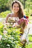 Donna che fa il giardinaggio con le rose Immagini Stock