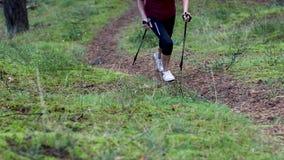 Donna che fa nordico che cammina sulla traccia della foresta stock footage