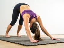 Donna che fa posizione discendente di yoga del cane Fotografia Stock