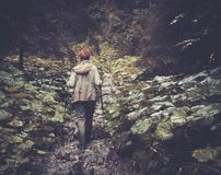 Donna che fa un'escursione nella foresta della montagna Fotografia Stock