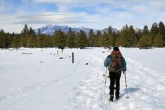 Donna che fa un'escursione nella neve immagini stock