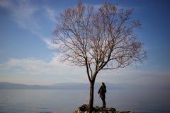 Donna che fa una pausa un albero sfrondato su una costa del lago Immagine Stock Libera da Diritti