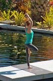 Donna che fa yoga all'aperto nella posa dell'albero vicino all'acqua Immagini Stock