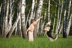 Donna che gioca cane fotografie stock