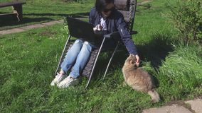Donna che gioca con il gatto arrabbiato video d archivio
