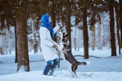 Donna che gioca con il husky immagine stock