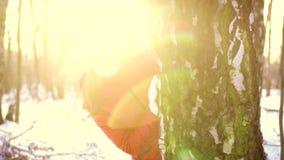 Donna che gode del giorno di inverno all'aperto La ragazza felice che si nasconde dietro il grande albero nell'inverno parcheggia video d archivio