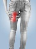 Donna che la massaggia tendini del ginocchio - muscoli di anatomia Fotografie Stock