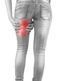 Donna che la massaggia tendini del ginocchio - muscoli di anatomia Fotografia Stock
