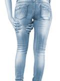 Donna che la massaggia tendini del ginocchio - muscoli di anatomia Fotografie Stock Libere da Diritti