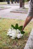 Donna che lascia i gigli sulla tomba immagine stock