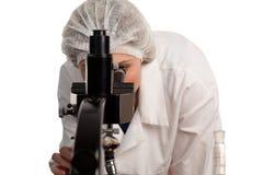 Donna che lavora alla ricerca medica fotografie stock libere da diritti