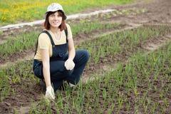 Donna che lavora nel campo della cipolla Fotografie Stock Libere da Diritti