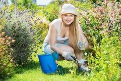 Donna che lavora nel giardino facendo uso degli strumenti orticoli su summe fotografia stock libera da diritti