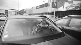 Donna che legge il catalogo di Ikea nel parcheggio dell'automobile dentro l'automobile archivi video