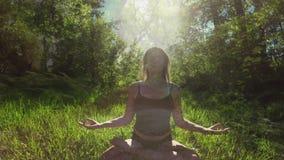 Donna che medita con la natura stock footage