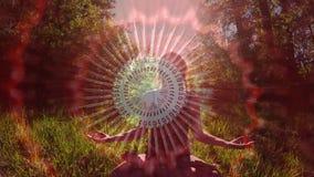 donna che medita nella foresta archivi video