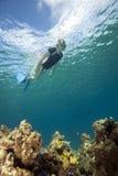 Donna che naviga usando una presa d'aria in acqua tropicale fotografie stock
