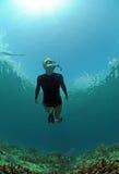 Donna che naviga usando una presa d'aria underwater Immagine Stock Libera da Diritti