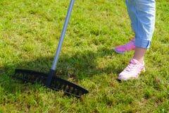 Donna che per mezzo del rastrello per pulire il prato inglese del giardino Fotografia Stock Libera da Diritti