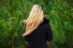 Donna che posa nei pini Immagini Stock Libere da Diritti