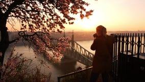 Donna che prende a foto il paesaggio urbano ed il ponte di libertà sopra Danubio dal terrazzo della collina di Gellert a Budapest stock footage