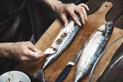 Donna che prepara il pesce dello sgombro Immagine Stock