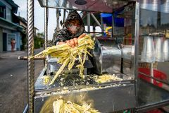 Donna che produce un succo zuccherato fresco vicino ad una strada, Mitho, Vietnam immagine stock