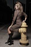 Donna che propone da un idrante del frie Fotografie Stock