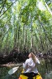 Donna che rema in kajak attraverso le foreste della mangrovia a Krabi, Tailandia immagini stock