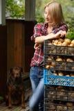 Donna che si appoggia i contenitori di patata Fotografie Stock Libere da Diritti