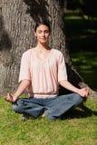 Donna che si siede in una posizione di yoga vicino ad un albero Fotografia Stock Libera da Diritti