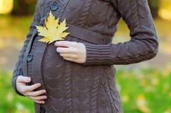 Donna che si tiene per mano con la foglia di acero sulla sua pancia incinta Fotografie Stock Libere da Diritti