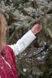 Donna che sta accanto alla pigna della tenuta del pino a disposizione in wi immagini stock