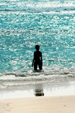 Donna che sta in un mare di shinny Fotografia Stock Libera da Diritti