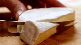 Donna che taglia il brie del formaggio rotondo con un coltello speciale stock footage