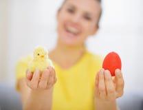 Donna che tiene l'uovo di Pasqua ed il pollo Rossi Fotografia Stock Libera da Diritti