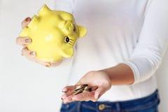 Donna che tiene maiale giallo Fotografia Stock