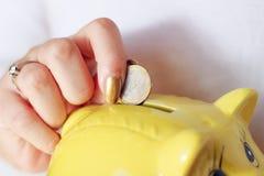 Donna che tiene maiale giallo Fotografia Stock Libera da Diritti