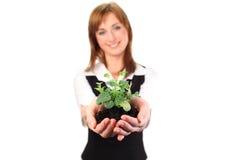 Donna che tiene una pianta fotografia stock