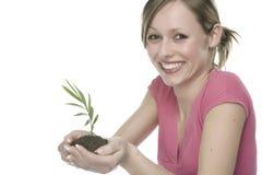 Donna che tiene una pianta crescente Immagine Stock