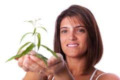 Donna che tiene una pianta verde fotografia stock