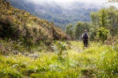 Donna che trekking nelle montagne Immagine Stock