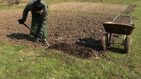 Donna che usando forcella per il concetto di giardinaggio del suolo stock footage